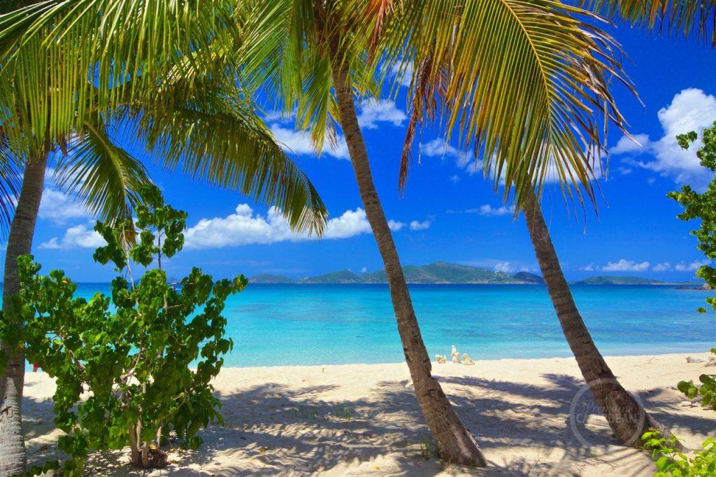 Smuggler's Cove, Tortola