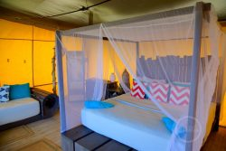 Kingsize bed - Anegada Beach Club