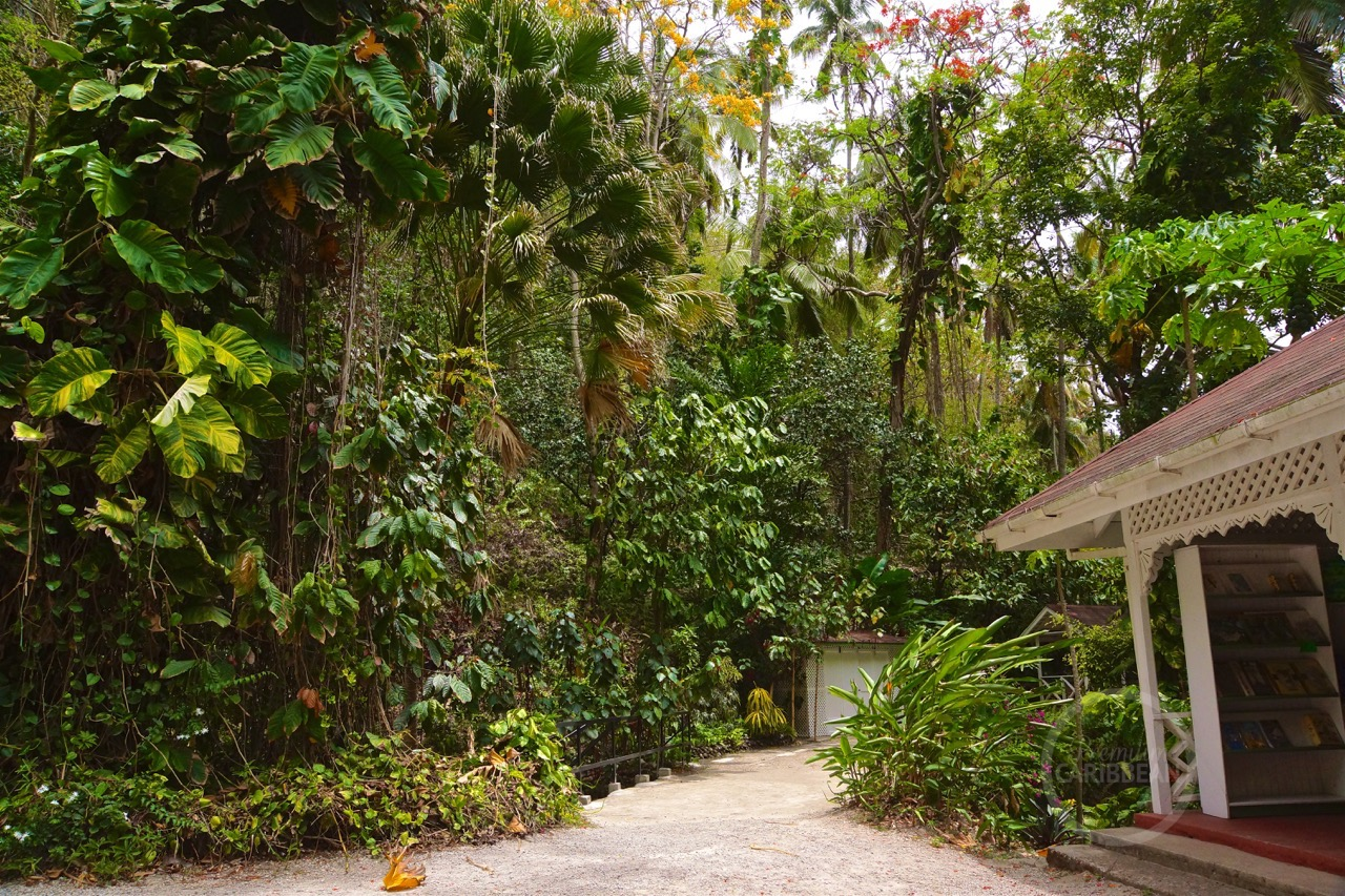 St Lucia Botanical Gardens Hotel R Best Hotel Deal Site