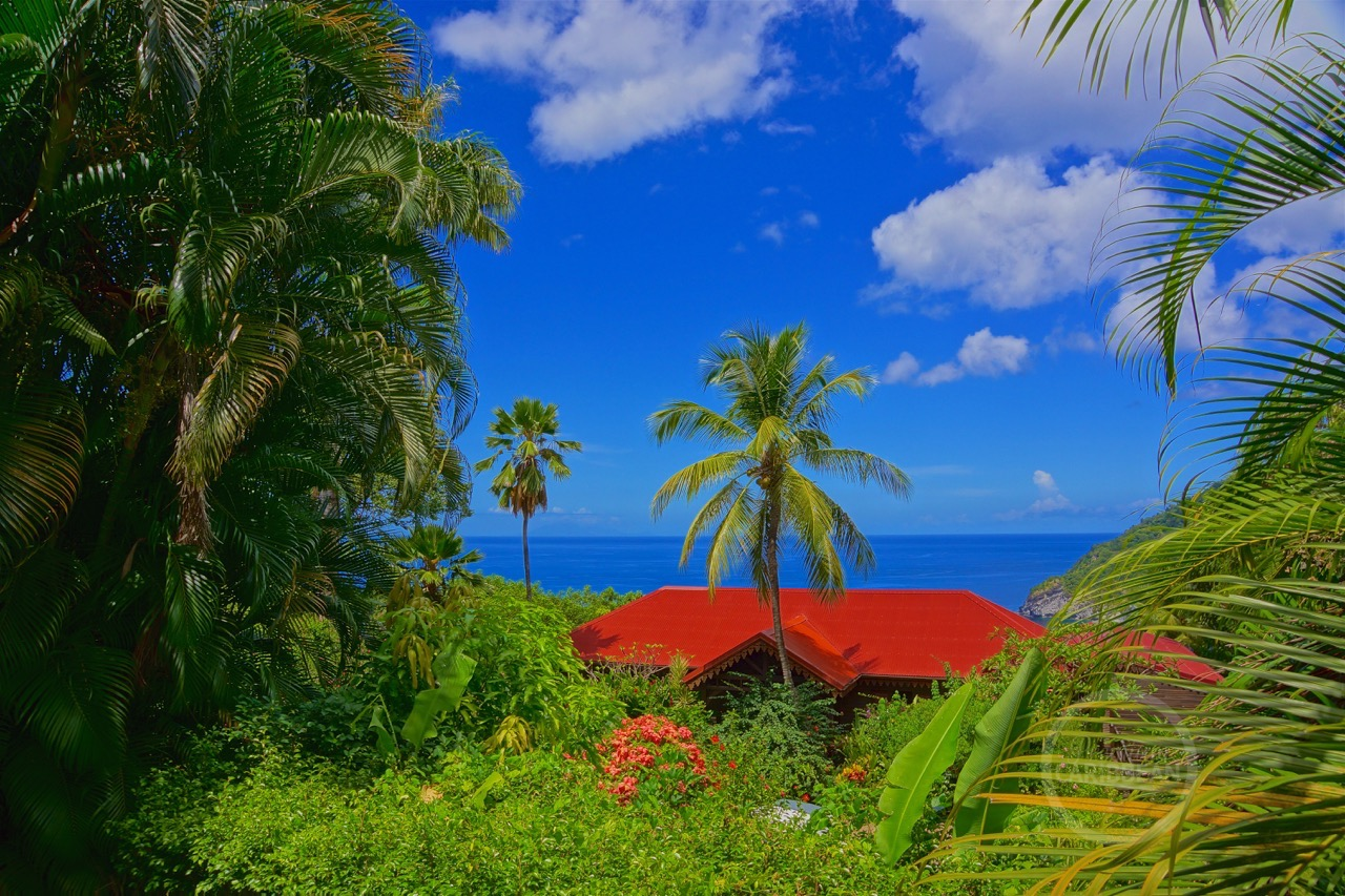 The most beautiful botanical garden of the caribbean for Jardin tropical guadeloupe